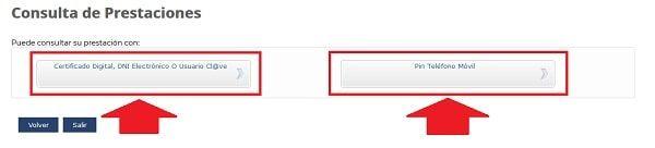 acceder al estado de solicitud sepe por certificado electrónico o teléfono